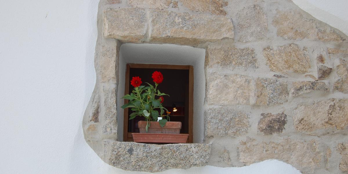 Residenza Domus Olbia Inn #8
