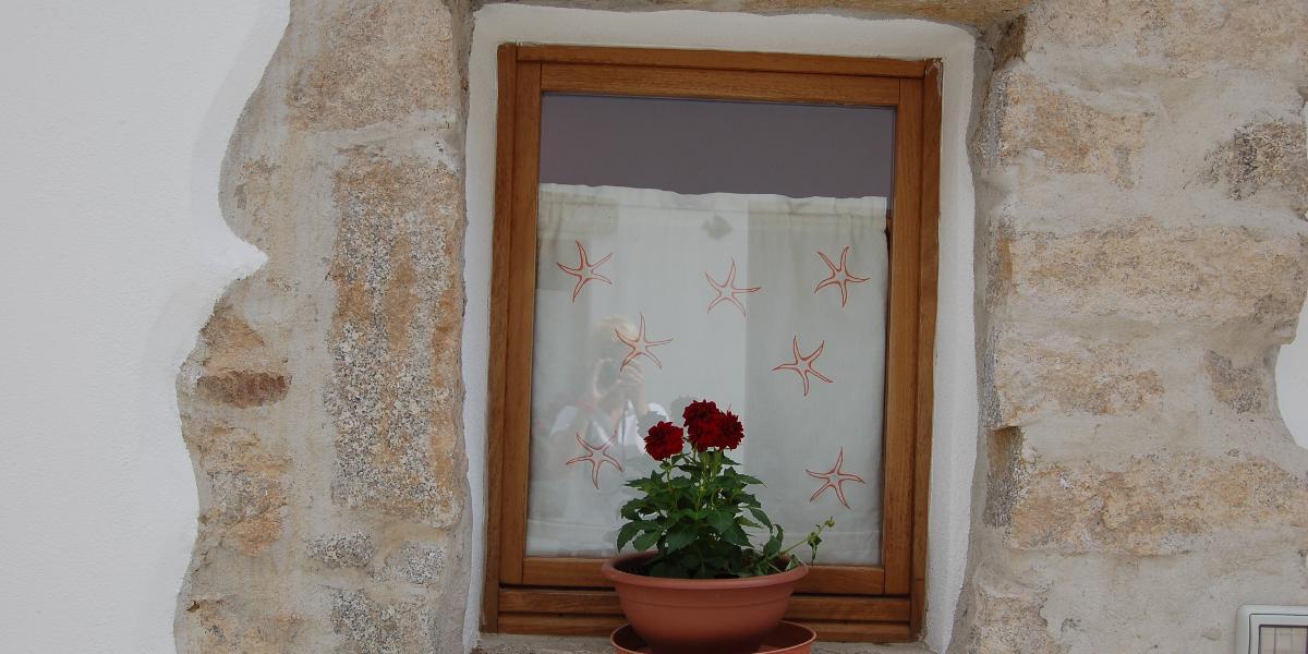 Guesthouse Domus Olbia Inn #14
