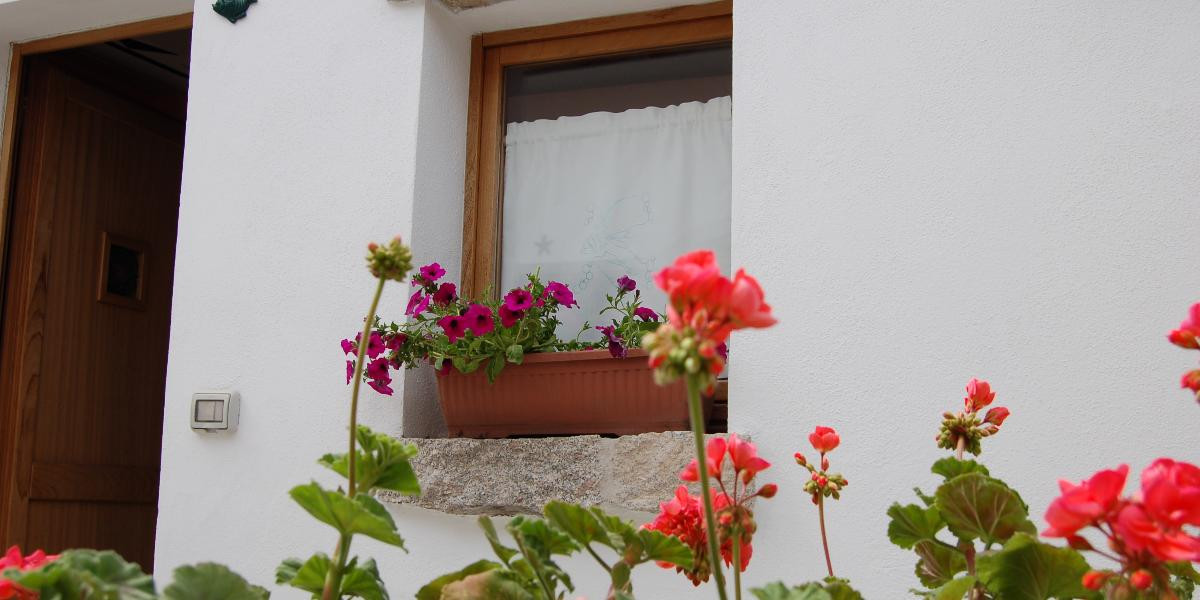 Guesthouse Domus Olbia Inn #16