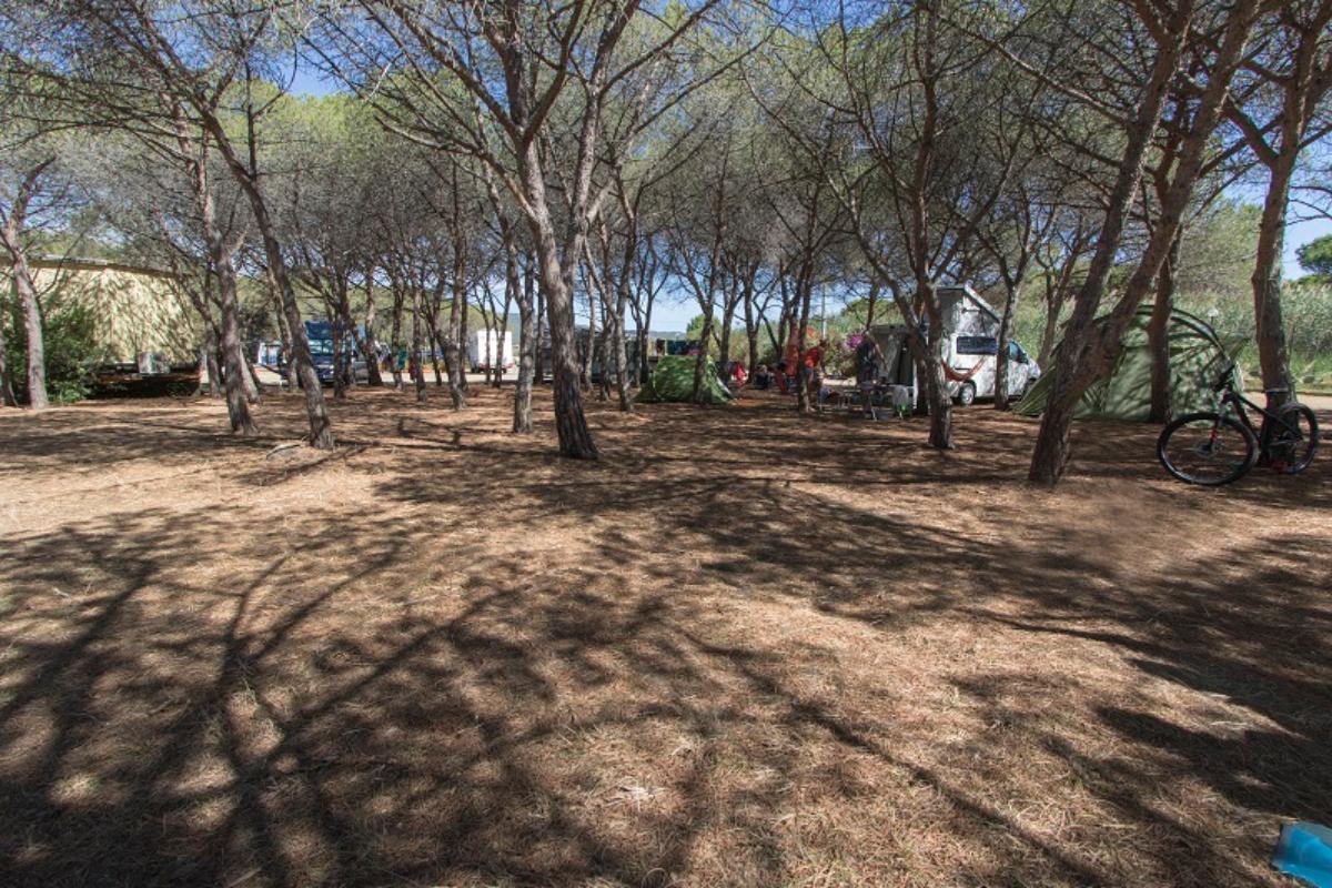 Campeggio in tenda sardegna casamia idea di immagine for Camping budoni